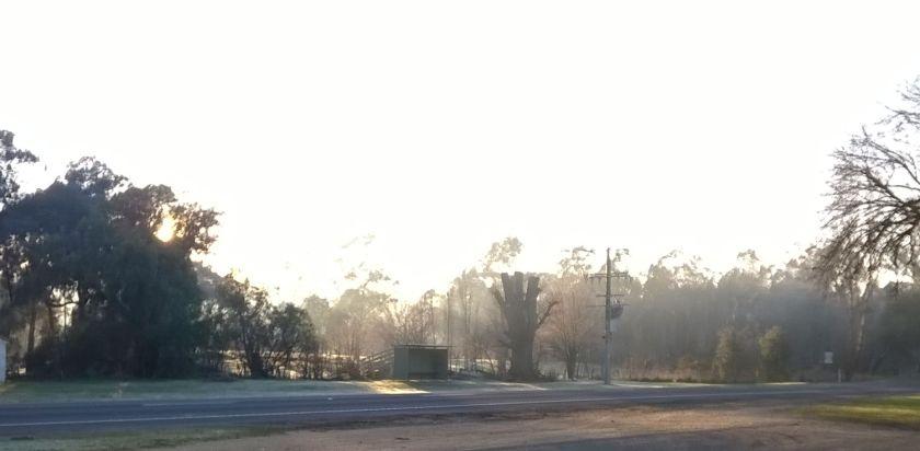 This morning, across the road (Nokia Lumia 530)