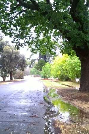 wetwalk3