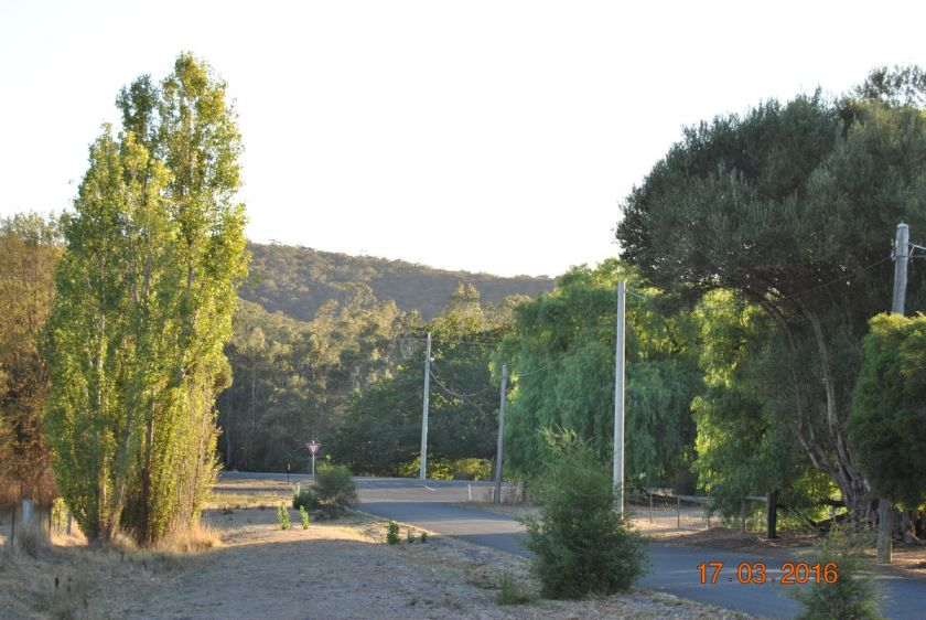 morning sun on the range, halway home