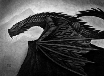 how-to-draw-a-wyvern_1_000000019779_3