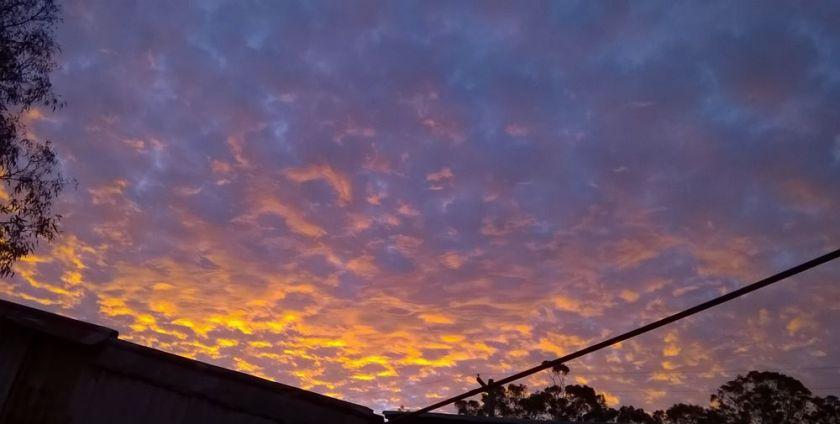 sunset530