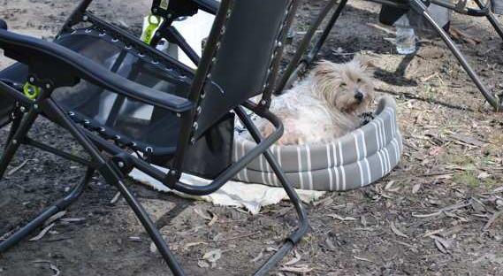 campingchairsvika